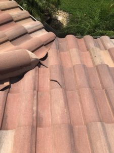 Cracked Tile Roof