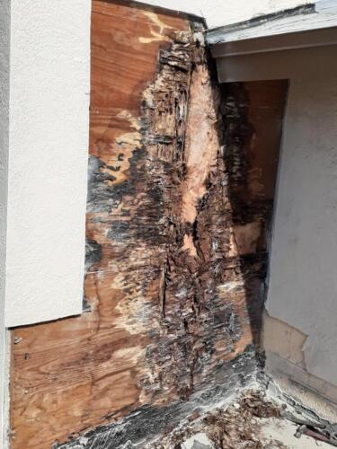 Zoller Roofing Inc, damaged wood found under old tile roof, Sarasota FL