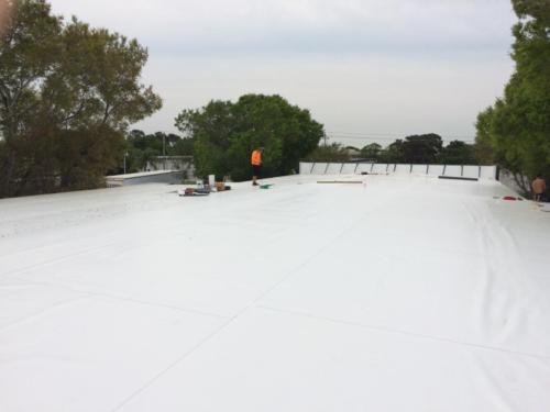 TPO roof 1